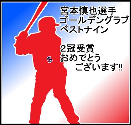Tokyo_yakult_swallows_20111128